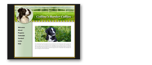 Custom breeder Website